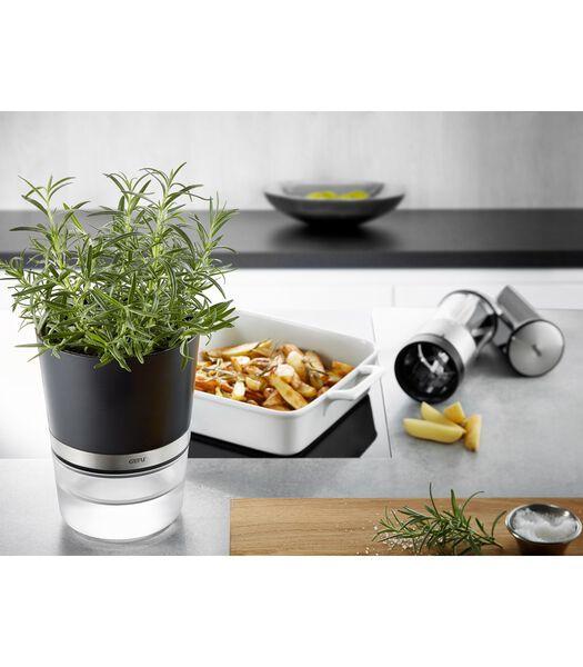 Pot d'herbes aromatiques BOTANICO
