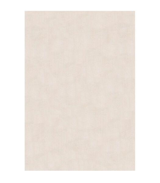 Modern woonkamertapijt CLAW 120x170 cm