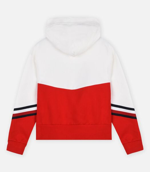 Sweaters Multicolor