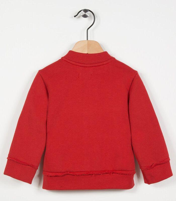 Fleece vest image number 1