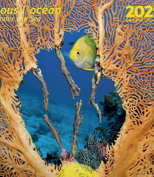 Kalender 30x30 cm Diep in de zee,