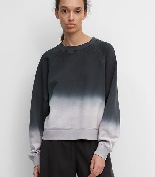 Sweatshirt met casual kleurverloop