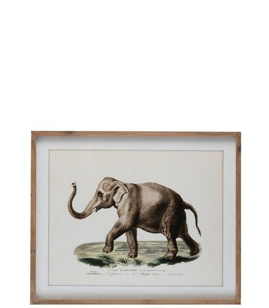 Cadre Elephant Bois/Verre Brun/Blanc