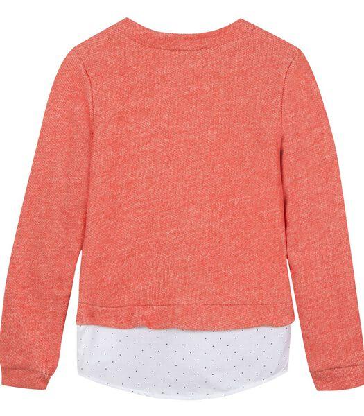 Sweatshirt met borduurmotieven