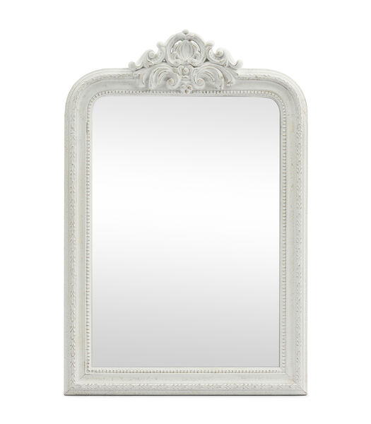 Vernier Mirror 80x120