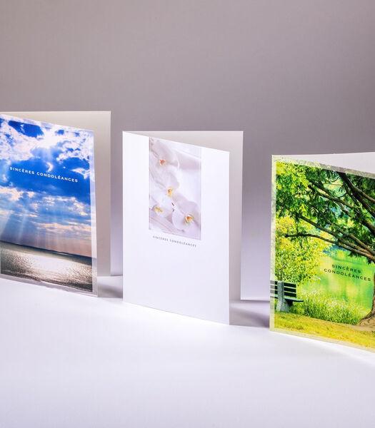 Doos van 6 dubbele kaarten condoleance, 6 enveloppen