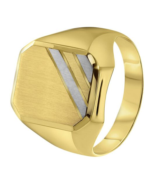14 Karaat 2-tone ring zeskant