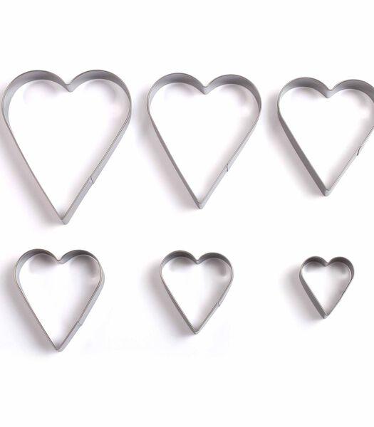 Set van 6 hartvormige koekjesvormen