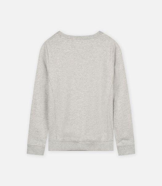 Sweaters Grijs