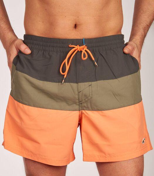 Zwemshort pm frame block shorts h-m