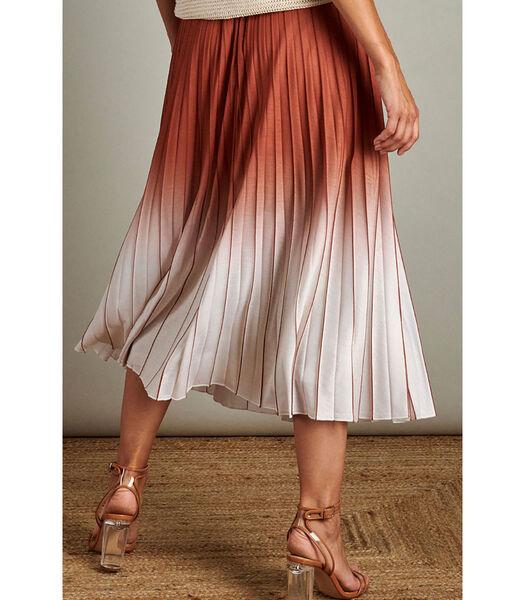 Elegante plissé rok met mooi dégradé effect