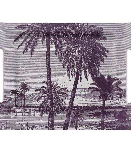 Croisiere Sur Le Nil Platform Desert