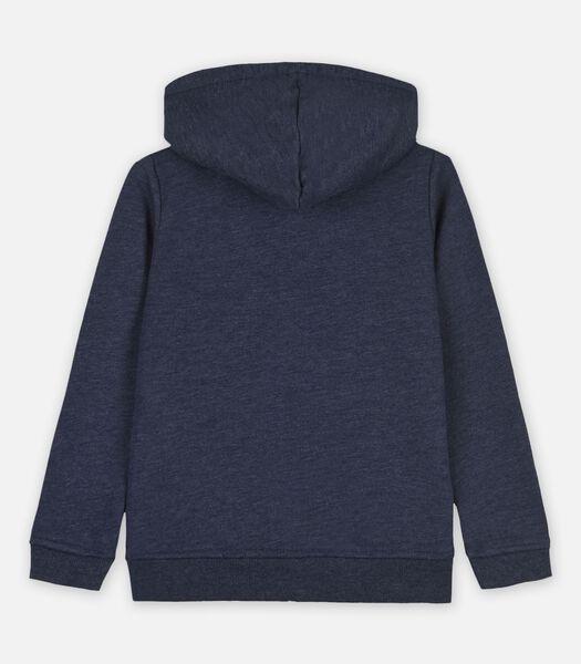 Sweaters Blauw
